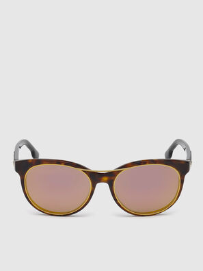 DL0213, Brown - Sunglasses