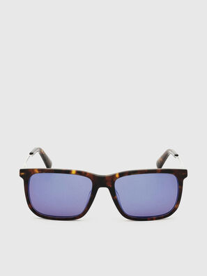 DL0309, Brown - Sunglasses